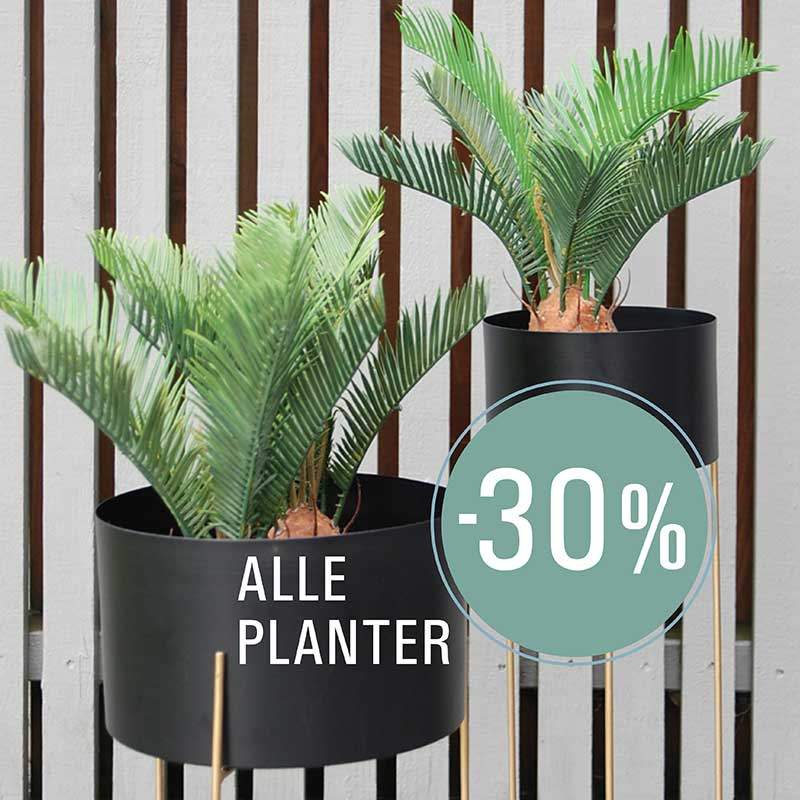 -30% på alle planter til og med 22. september